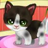 Игра для девочек Помой Питомцев бесплатно онлайн